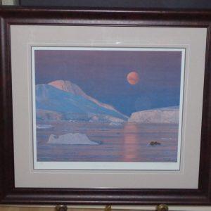 Arctic Moonlight